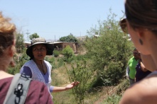 Learning about the sustainable agriculture efforts of DouglaPrieta, a community centre for women and families to come together and learn about sustainable gardening, cooking with a variety of vegetables they can grow themselves, and sewing among many other things!